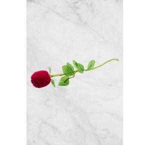 Rosa de veludo para anel